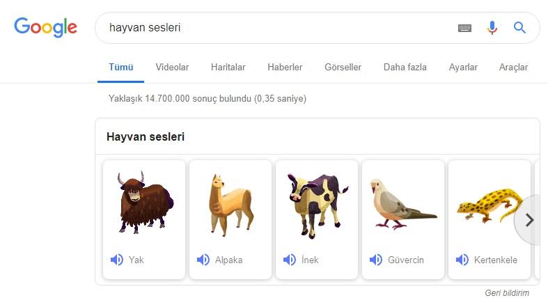 hayvan sesleri google