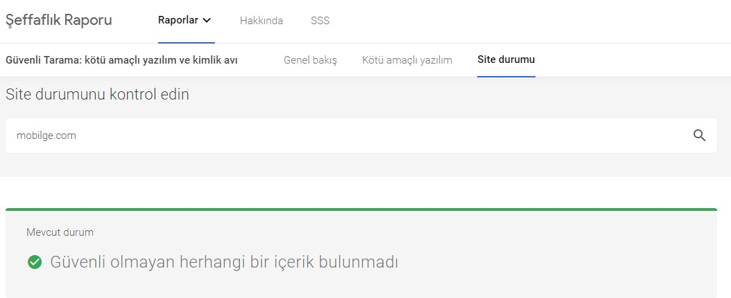 google güvenli site