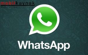 2686_whatsapp