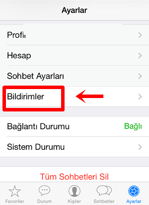 iphone 6s whatsapp mesaj önizleme